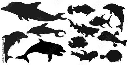 silhouette of fish collection