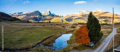 Fotobehang Bergen Panorama mit Piz Platta, Alp Flix, Hochmoor im Herbst; Graubünden, Schweiz