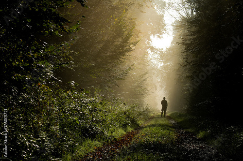 Person im Wald im Morgenlicht