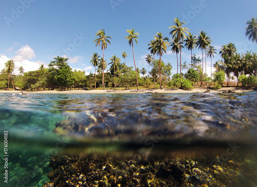 Papiers peints Tropical plage Solomon Islands, tropical water