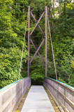 A view across the Inverted Bowstring Bridge across the Roe river in the Roe Valley country park near Limavady in County Londonderry in Northern Ireland  - 176005359