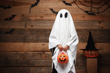 Fototapety Halloween Concept - little white ghost with halloween pumpkin candy jar doing trick or treat with curved pumpkins over bats and spider web on Wooden studio background.