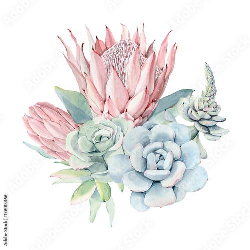 Watercolor vintage succulents bouquet - 176015366