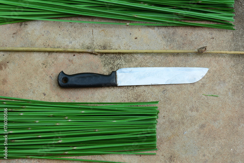 the knife and the green reed on cement ground Poster