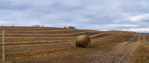 Poster Diepbruine Hay Bale in the Autumn Harvest