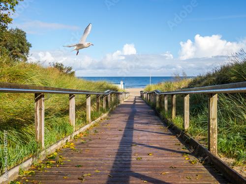 Deurstickers Noordzee Strandübergang am Meer - Herbst