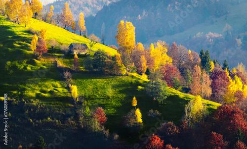 Fotobehang Landschappen Fall colors in Bucegi Mountains