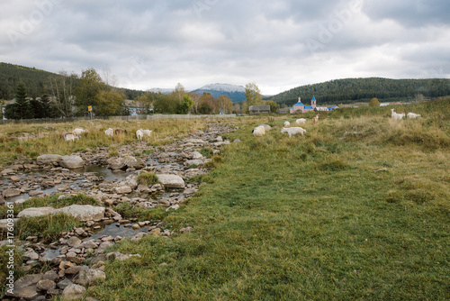 Foto op Plexiglas Herfst Autumn landscape