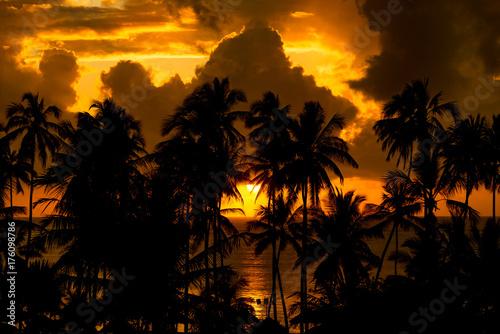 Foto op Canvas Zanzibar Sonnenaufgang Sansibar