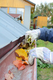 Leaves in eaves. Cleaning gutter blocked with autumn leaves. - 176103387