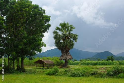 Aluminium Thailand A tropical rural scene in Thailand. Sukhothai Province, Northern Thailand