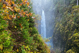 Hidden waterfall in Austrian forest