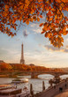 Paris with Eiffel Tower against autumn leaves in France