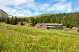 Abandoned Cabin - 176158138