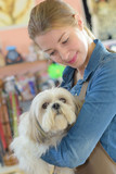 happy woman and dog in grooming salon - 176159324