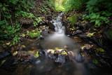Kleiner Wasserfall eines Baches im Wald, langzeitbelichtet