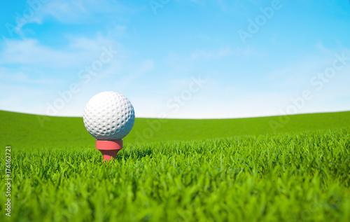 Staande foto Bol Golf ball on green grass
