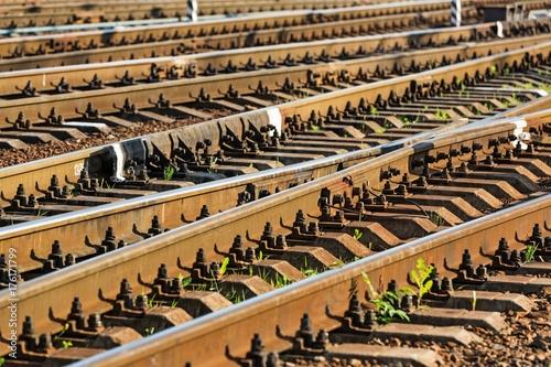 Foto op Canvas Spoorlijn Railroad track.