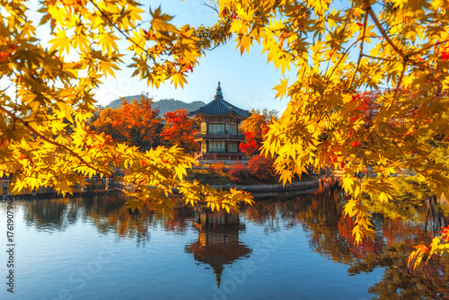 Gyeongbokgung Palace With maple leaves in the fall colors, Seoul, South Korea Poster