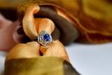 サファイアの指輪 スカーフ