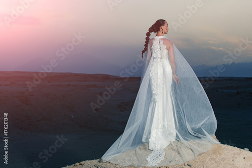 Fotobehang Lichtroze Woman in wedding dress and veil, back view