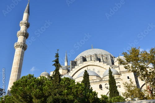 Suleymaniye Mosque in İstanbul Poster