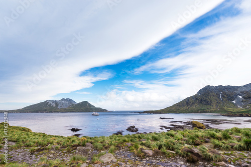 Fotobehang Pinguin beautiful rocky beach with penguins