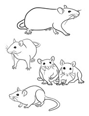 Mouse line 06. Good use for symbol, logo, web icon, mascot, sign, or any design you want.