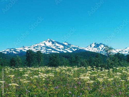 Spoed canvasdoek 2cm dik Blauw landscape