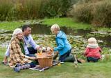 Family picnic - 176240727