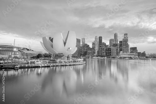 Singapore downtown skyline Poster