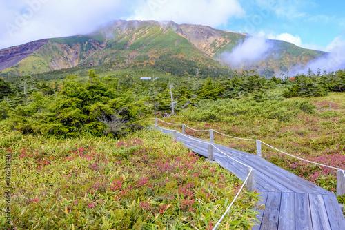 Fotobehang Pistache 紅葉の御嶽山