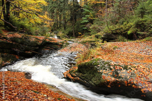Keuken foto achterwand Herfst Černá Desná, a watercourse running in the north of the Czech Republic in the Jizera Mountains.Forest waterfall with autumn color change. Beautiful nature.