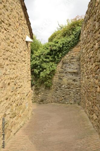 Poster Smal steegje Stone alley in Monells, Girona, Spain