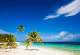 vacation at perfect tropical white sand beach - 176302325
