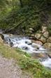 Kleiner Bach - Zulauf - mit Wasserfall  - 176304569
