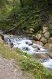 Kleiner Bach - Zulauf - mit Wasserfall
