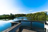 Pond Overlook - 176322591