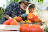 Father teaching his son how to carve a pumpkin for halloween. - 176347179