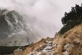Mountain track heading to foggy mountain - 176353388