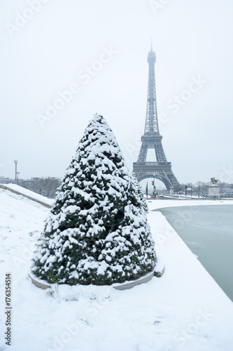 Fotobehang Eiffeltoren Eiffel tower and pine tree under the snow in winter in Paris, France