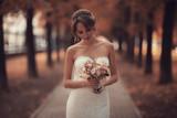 Bride wedding portrait white dress - 176367962