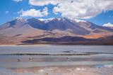 Laguna Honda in sud Lipez Altiplano reserva, Bolivia - 176378578