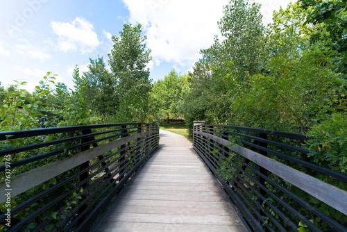 Fotobehang Bruggen Bridge over Water