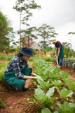 Loving Asian couple wearing bucket hats and aprons working together at spacious backyard garden, pretty woman sitting on haunches and pulling out weeds while her boyfriend spading ground - 176392190