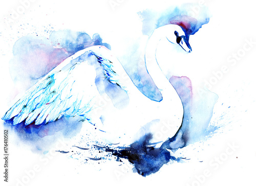 Foto op Aluminium Schilderingen swan