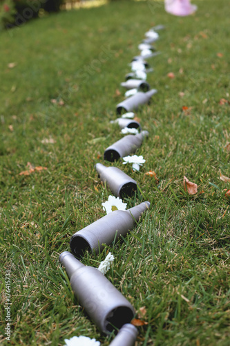 Foto op Aluminium Gras garden deco