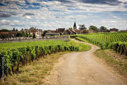 Keuken foto achterwand Wijngaard Burgundy. Road in the vineyards leading to the village of Vosne-Romanée. France