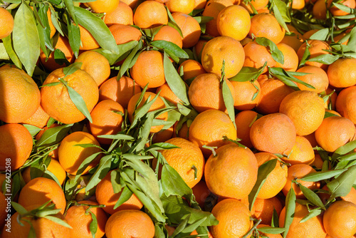Poster Marokko Oranges in market, Marrakesh, Morocco