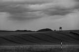 Fields in BW